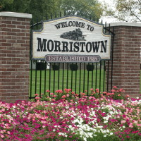 Morristown Tree Services