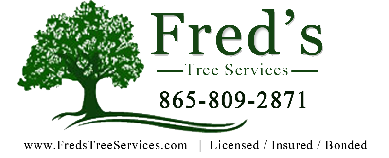 Fred's Tree Services